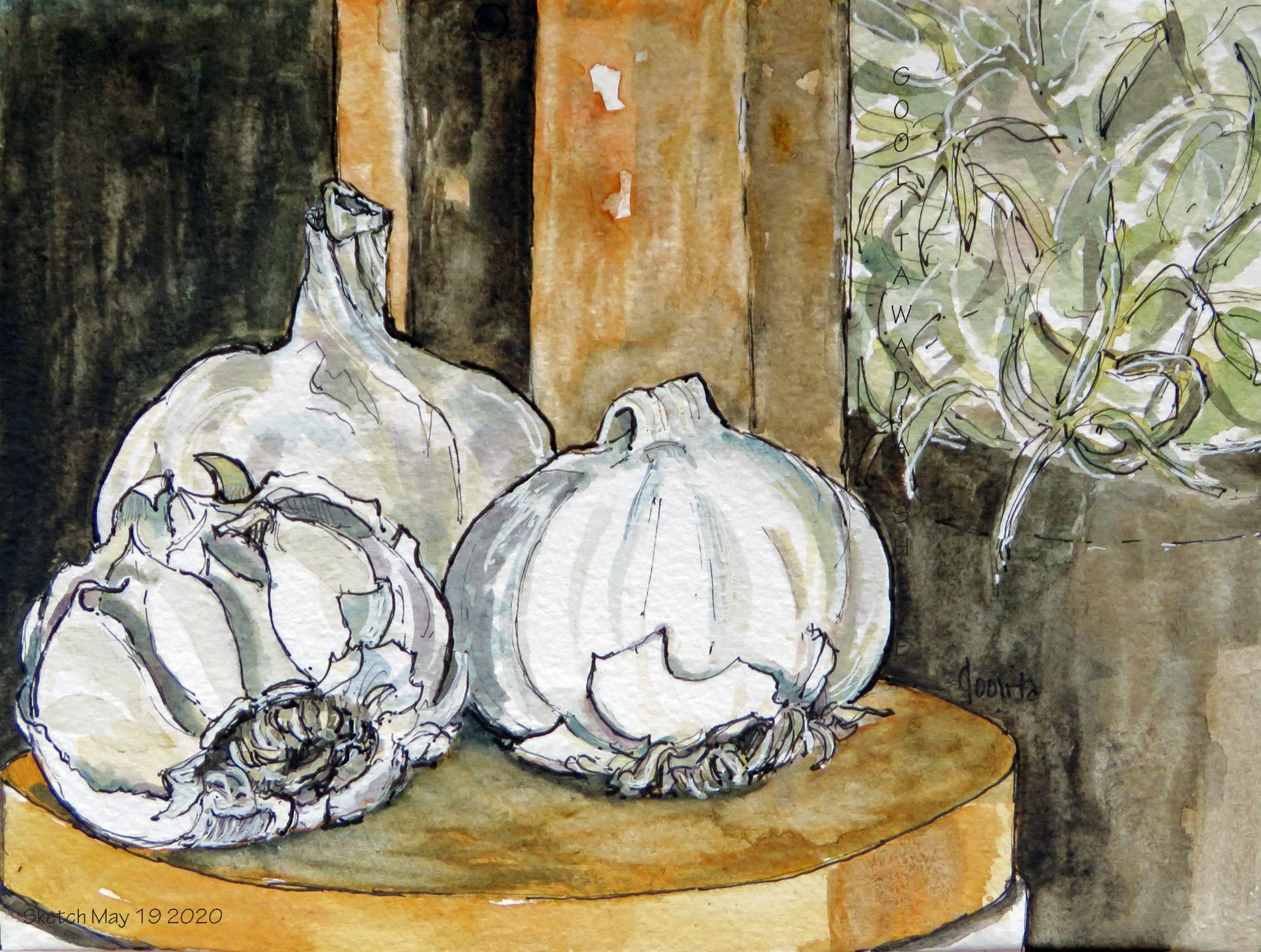 """Garlic - 6"""" x 8"""" Original Watercolour on Archival Paper. Prints Available."""