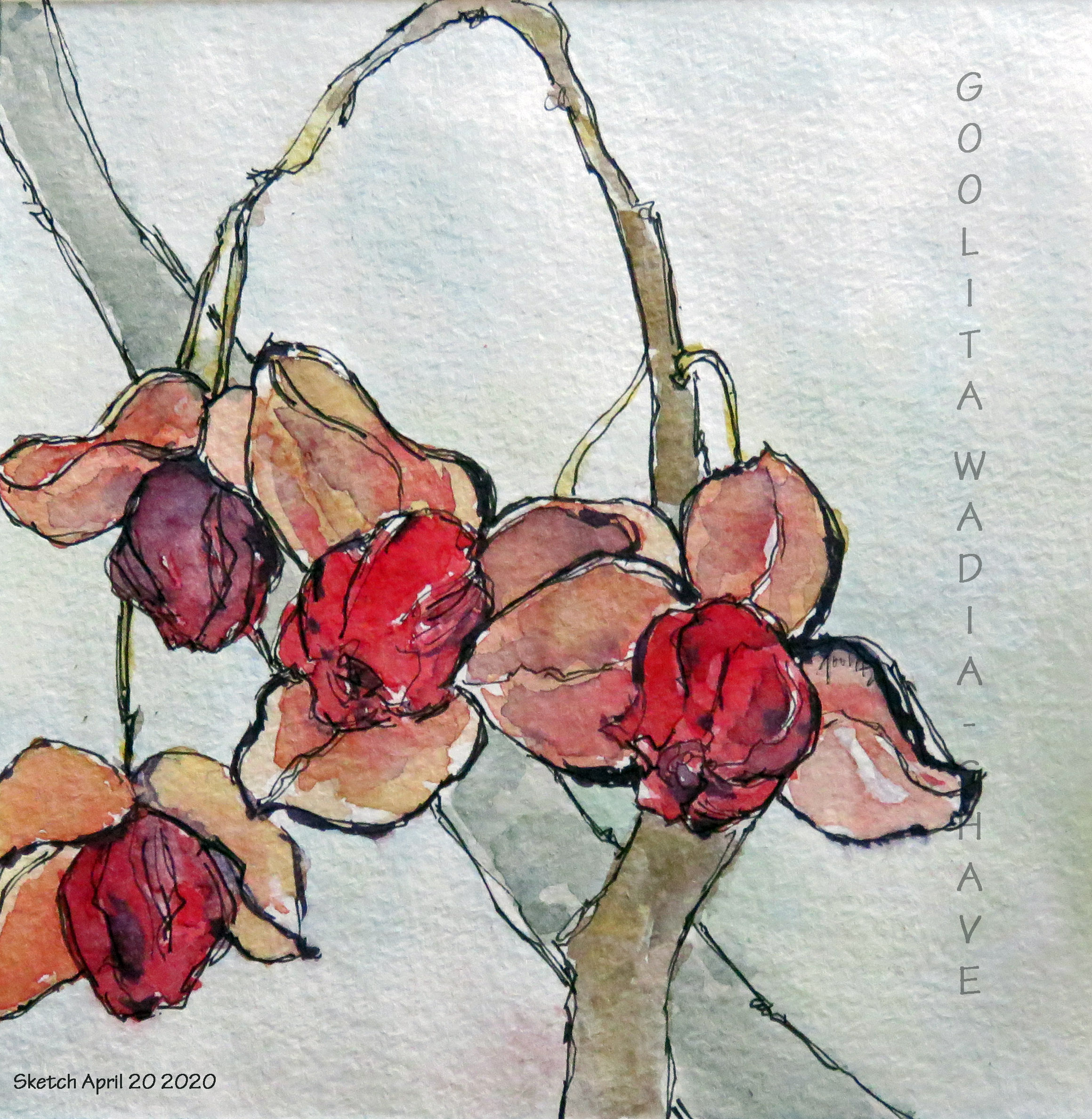 """Nature's Gifts - 6"""" x 6"""" Original Watercolour on Archival Paper."""