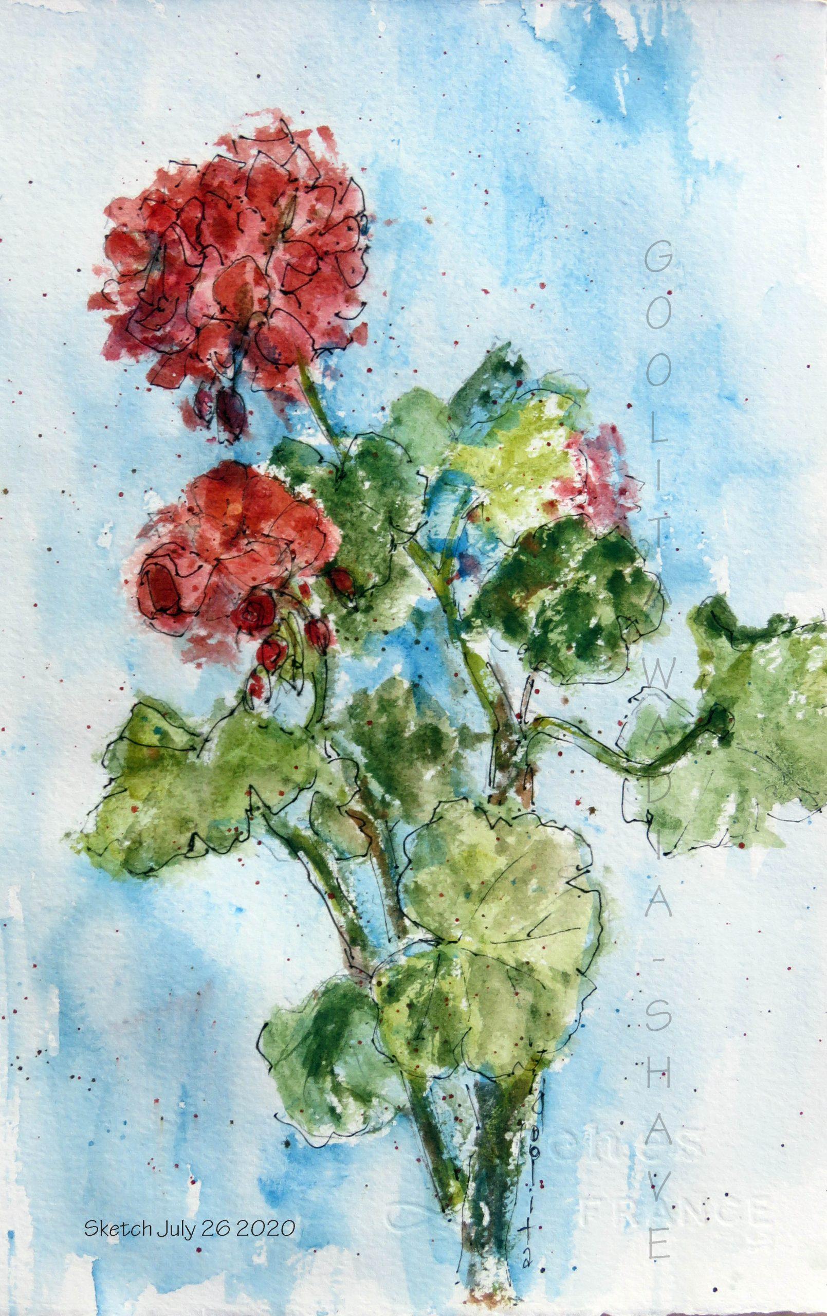 """Geraniums - 11"""" x 7"""" Original watercolour on Arches archival paper"""