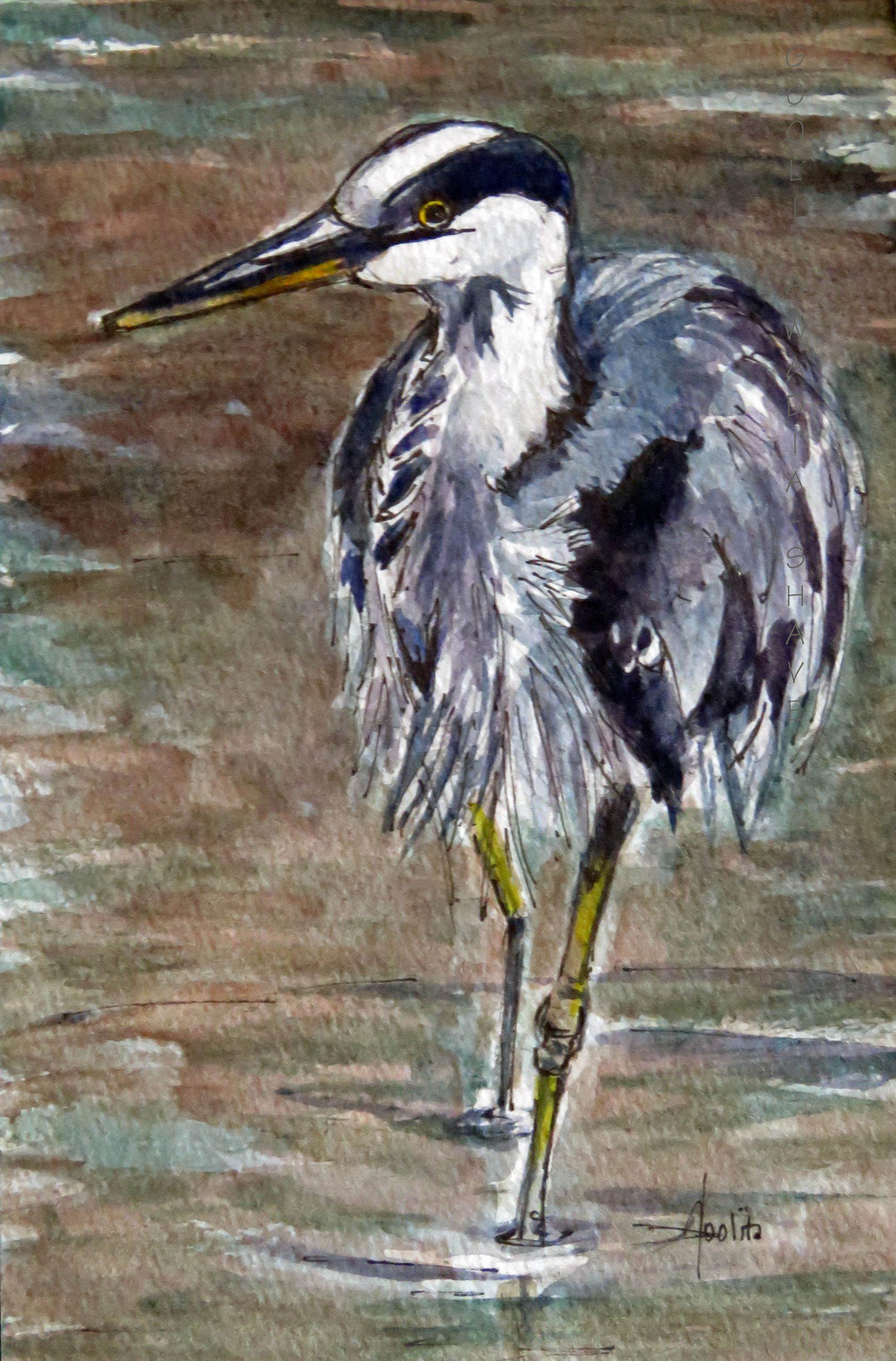 "Victoria BC (Series) Swan Lake Nature Sancturay 4"" x 6"" Original Watercolour on Archival Paper."